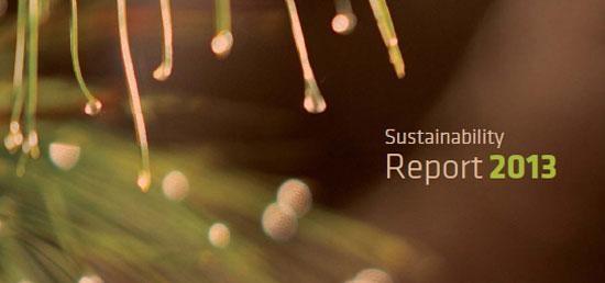 Celulose Irani publishes its 8th Sustainability Report